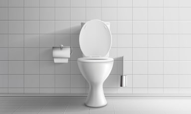 Toilet repair service Plumber in Ipswich
